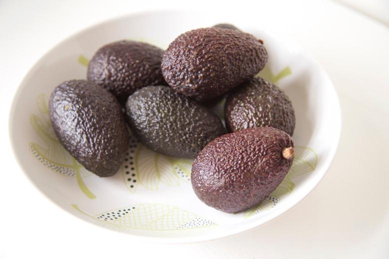 Avocado 1