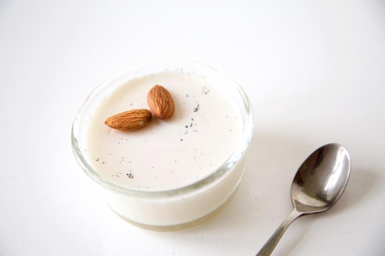 amandelmelk panna cotta (lactosevrij)