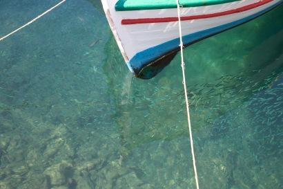 Vis in de haven van Fiscardo