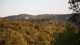 uitzicht op de groene heuvels