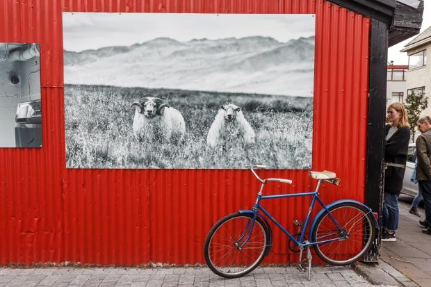 Reykjavik - Fotografi
